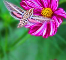 Moth at Work Sticker