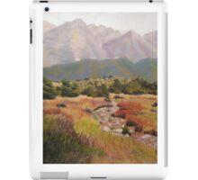 Dry Creek Bed iPad Case/Skin