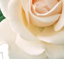 WHITE ROSE Sticker