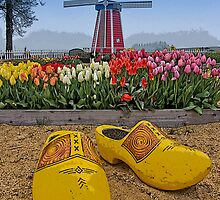 The Wooden Shoe by Thom Zehrfeld