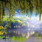 Spring Waters by Igor Zenin
