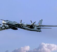 "Tupolev Tu-95MS ""Bear H"" Black 23 by Colin Smedley"