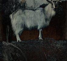 La Capra - The Goat by mimulux