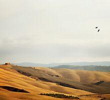 Tuscan Landscape by VaidaAbdul