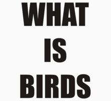 What Is Birds - A study in existentialism by Tinycoke