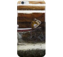 Mouse Capers iPhone Case/Skin