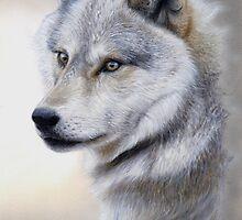 Vigilance - Wolf Portrait by tennantart