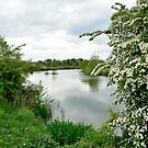 Rural scene with the Leye river in Astene, Flanders, Belgium by 7horses