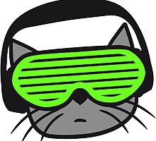 Cat DJ music party glasses by Style-O-Mat
