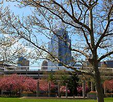 Spring in Cincinnati 2014 by Tony Wilder