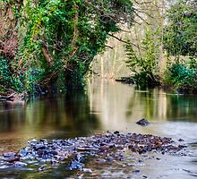 Rivelin Tranquility by elfcall