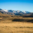 Hakatere Conservation Area - NZ by Kathy Reid