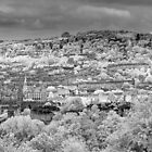 Bath City View by Chris Tarling