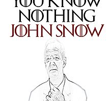 John Snow: Bastard. Anchor! by naylor667