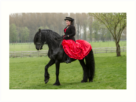 Friesian Horse and Rider by Patricia Jacobs CPAGB LRPS BPE3