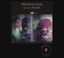 (((Ohr))) Destruction Of The Flesh by Max Harris