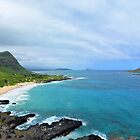 Makapuu Bay by Lucy Adams