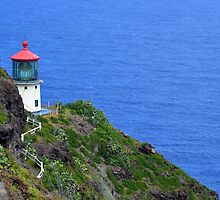 Makapuu Lighthouse by Lucy Adams