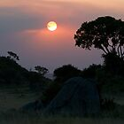 Sunset over Kopjes by Valerija S.  Vlasov
