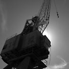 Crane in Silhouette by Ben Loveday