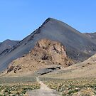 Along the desert road, Nixon Nevada USA by Anthony & Nancy  Leake
