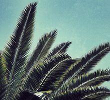 Palms by RichCaspian