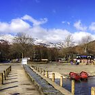 Coniston Shore by Tom Gomez