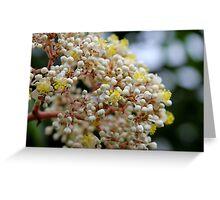 Floral Popcorn Greeting Card