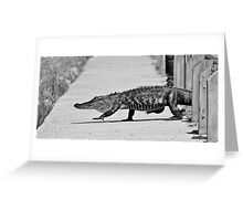 Gator Walking Greeting Card
