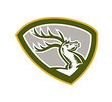 Stag Deer Retro Woodcut Shield by patrimonio