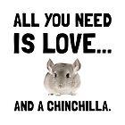 Love And A Chinchilla by AmazingMart