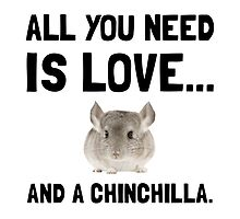 Love And A Chinchilla by AmazingMart