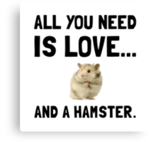 Love And A Hamster Canvas Print
