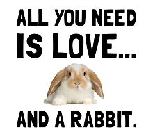 Love And A Rabbit by AmazingMart