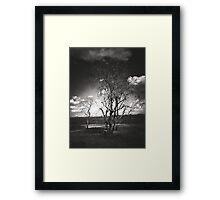 Free Souls Framed Print