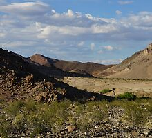 Death Valley National Park by Loisb