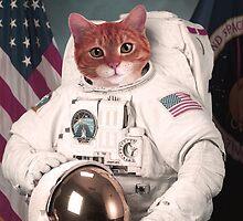Astro Cat by radicalpanda