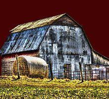 Rustic Barn by Dawn Beck