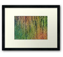 Win06 Framed Print