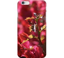 Bougainvillea Sun Delight iPhone Case/Skin