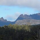 Cradle Mt ... near the turnoff to Devils @ Cradle by gaylene