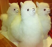*Three Toy Alpacas* by EdsMum