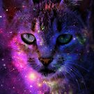 The Space Kitty  by tropicalsamuelv