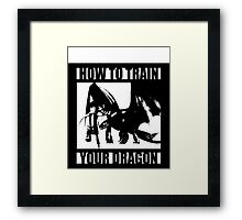 How to train your dragon toothless Framed Print
