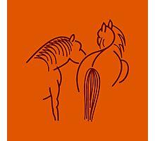 Two Horses (dark brown) Photographic Print