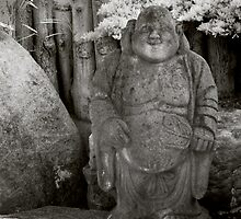 Smiling Buddha by koping