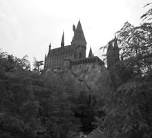 Hogwarts by bricoxox