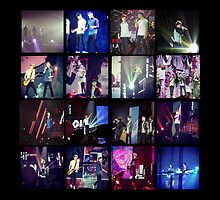 Take Me Home Tour by May92