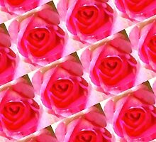 Pink Roses by Artisimo