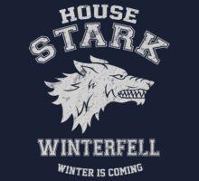 Team Stark 2 Kids Clothes